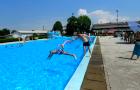 Plavalni športni dan 2019